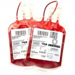 Bioreattori e cellule staminali produrranno sangue artificiale