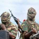 moglie Amadou Ali rapita Boko Haram