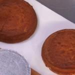 ricette dolci torta al cappuccino