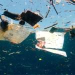 Mare inquinato