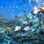 rifiuti mare plastica
