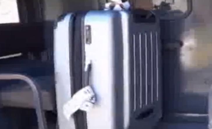 Melbourne, italiana arrestata all'aeroporto con cinque chili di cocaina