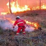 34 roghi oggi incendi italia