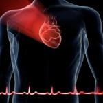 cuore ridotta la mortalità per infarto