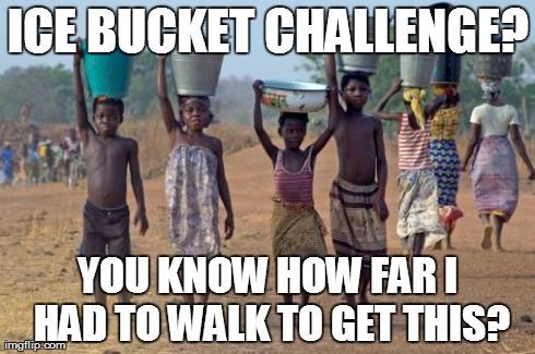 ice bucket challenge critiche