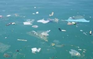 mare italiano pieno di rifiuti