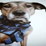 Nicole Deponte moda cravatte seta