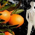 Vestiti fatti con scarti di arance e limoni moda bio sostenibile Orange Fiber