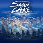Swan Lake di Matthew Bourne Teatro Arcimboldi Milano 11 23 novembre 2014