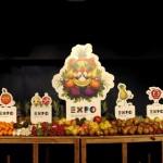 Expo 2015 nessun vantaggio per il Sud per l'assessore al turismo della Sicilia