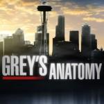 grey's anatomy 11 serie