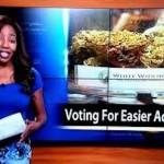 giornalista dimissioni marijuana legalizzazione alaska