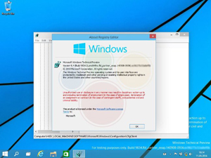 preview win9