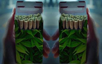 Marijuana, tra pro e contro: tutti i benefici e i molteplici effetti negativi