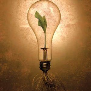 concorso per idee innovative sulla sostenibilità