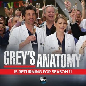 anticipazioni grey's anatomy