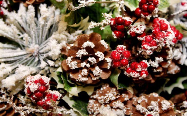 Natale come addobbare la casa in maniera creativa ed for Albero di natale con pigne