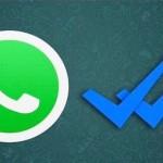 notifica blu whatsapp