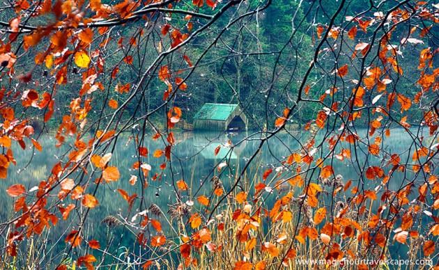 casa acqua autunno