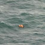 Detriti in mare dell'aereo malese scomparso