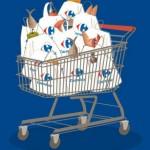 Carrefour assunzioni 2015