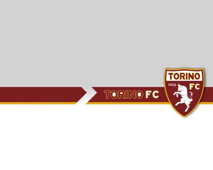Torino calciomercato