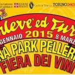 Carnevale Torino 2015 date e programma