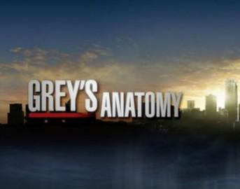 Grey's Anatomy 11 anticipazioni episodio 11X14: la Herman sotto ai ferri