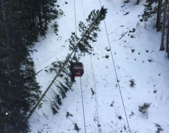 Val Gardena, albero caduto su cabinovia: sfiorata la tragedia per 200 sciatori