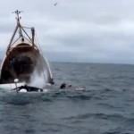 Due marinai morti a Civitanova