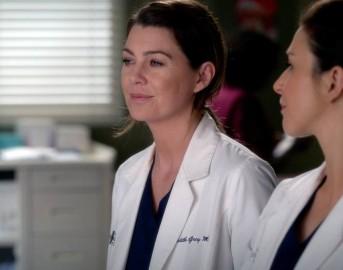 Grey's Anatomy 14 streaming: cosa accadrà nella nuova stagione del medical drama?