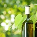 Vinissage 2015 salone del vino Asti