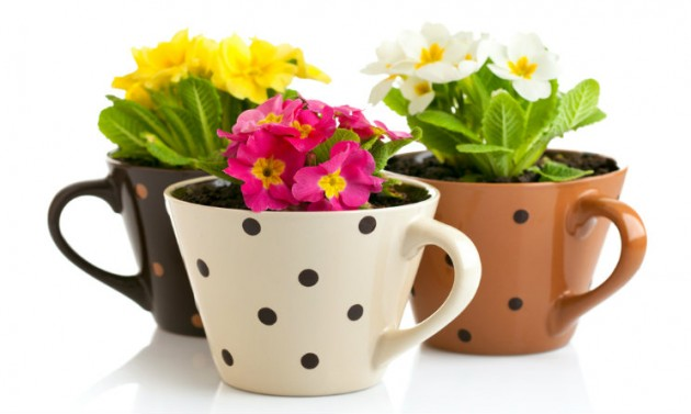 Arredare casa fai da te 3 idee per vasi da fiori - Idee originali per arredare casa ...