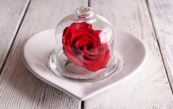 Festa della mamma 2015 idee regalo low cost: la rosa stabilizzata un dono originale per decorare la casa