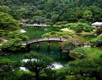 Italian Koi Show 2015: Cesena si trasforma in un angolo di Giappone, con bonsai e giardini ornamentali