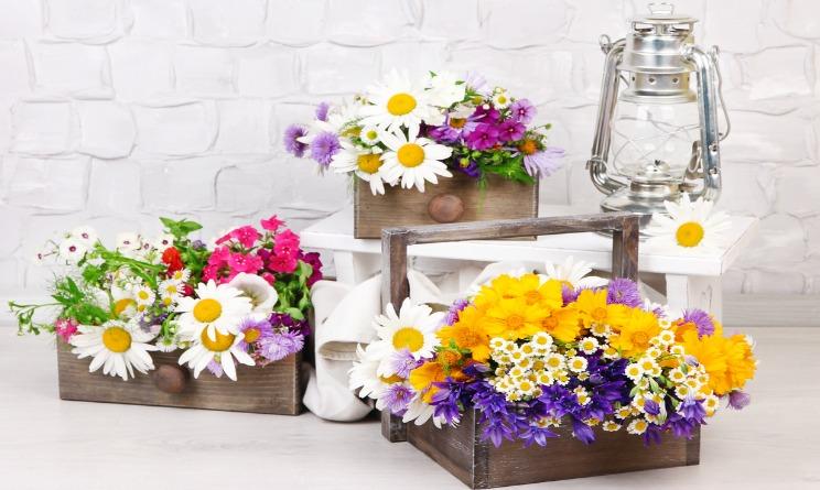 Il giardino in casa ecco come realizzare il vostro angolo for Terrazzi con piante e fiori