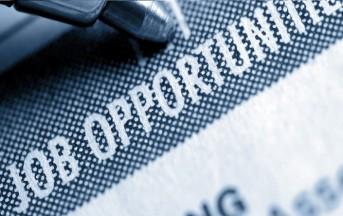 Offerte di lavoro all'estero per laureati in Giurisprudenza e Scienze politiche: le occasioni di agosto 2015