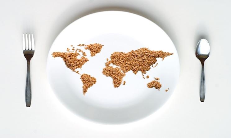 cibo ecologia ambiente