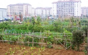 Gardeniser e orti urbani: a Roma il corso per scoprire una delle professioni del futuro