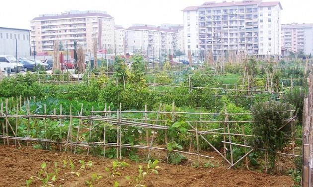 Gardeniser e orti urbani a roma il corso per scoprire una for Corso di arredatore d interni roma