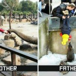 le foto più divertenti, mamme e papà, notizie curiose