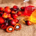 olio di palma meglio evitarlo