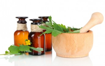 Zanzare rimedi naturali: il repellente fai da te agli oli essenziali per allontanarle in estate