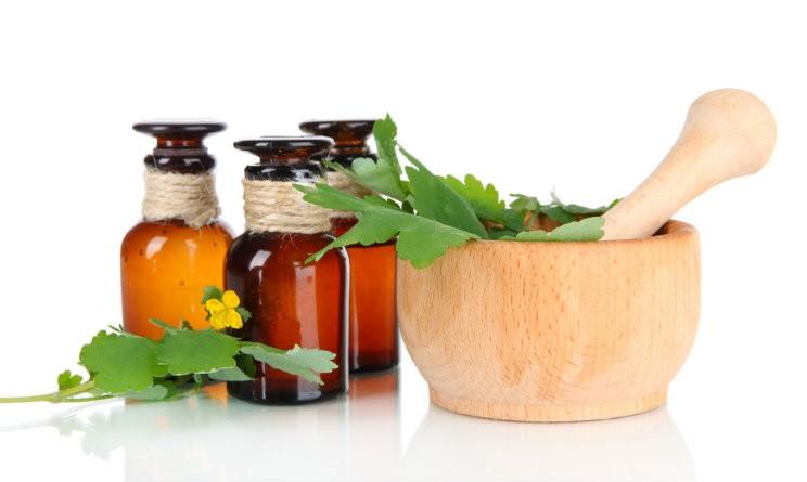 Zanzare rimedi naturali il repellente fai da te agli oli - Contro le zanzare in casa ...