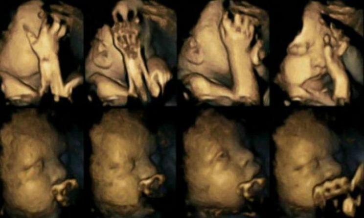 fumo in gravidanza danni, fumo in gravidanza foto,