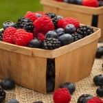 Ecco una ricetta per il vostro dolce dell'estate flan di latte ai frutti di bosco