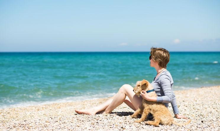 Spiagge attrezzate per cani ecco dove andare dalla - Bagno wanda cesenatico ...