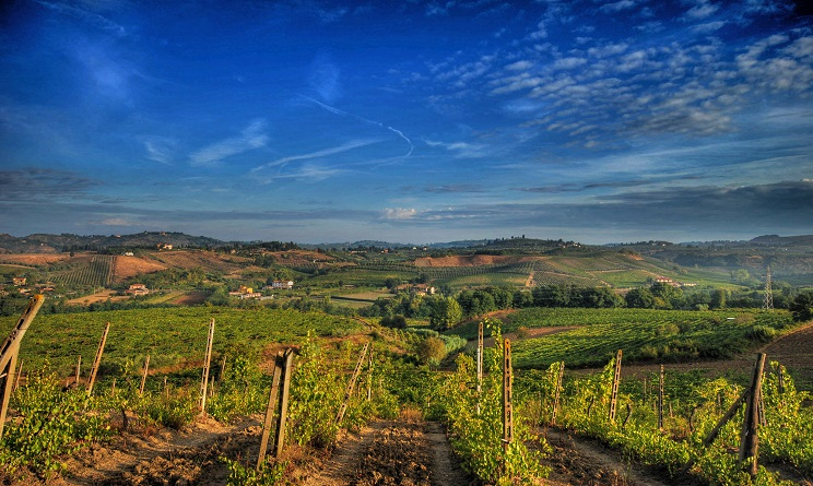 Enogastronomia in Toscana: 4 itinerari da non perdere, da Montespertoli a Castellina in Chianti