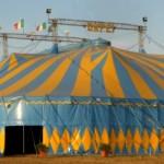 assalto armato al circo orfei