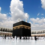 crolla gru su grande moschea